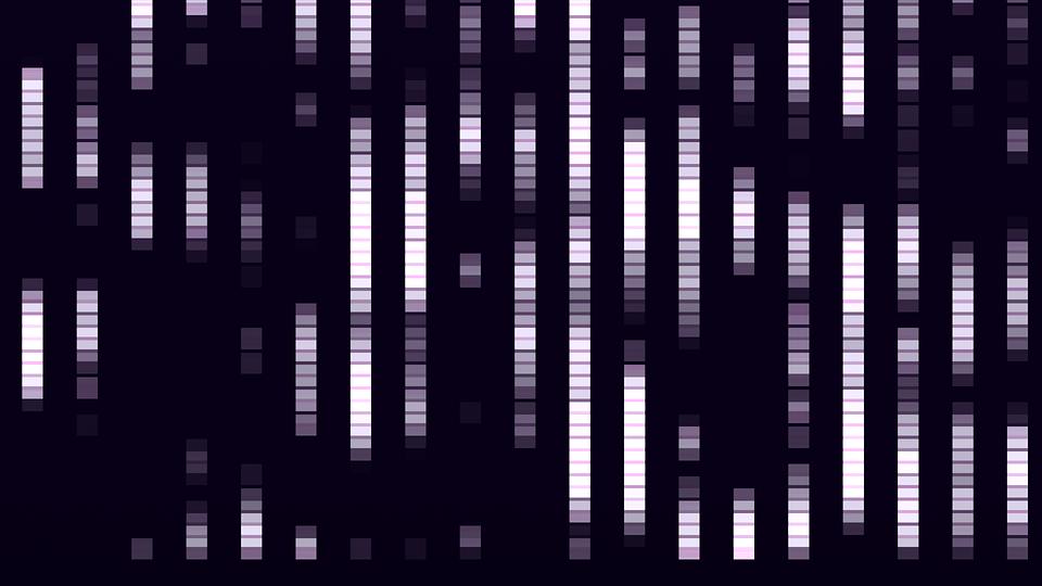 Kompresja JPEG oraz jej wykorzystanie w steganografii